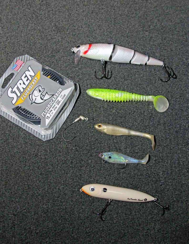 Different kinds for swimbaits for bass.