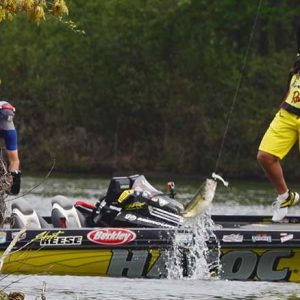 How to Choose Swimbaits for Bass