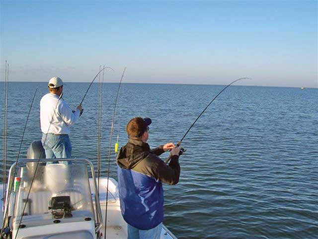 Speckled Trout Fishing Heats Up