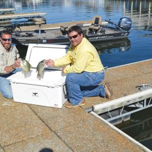Boat Rigging for Successful Fishing