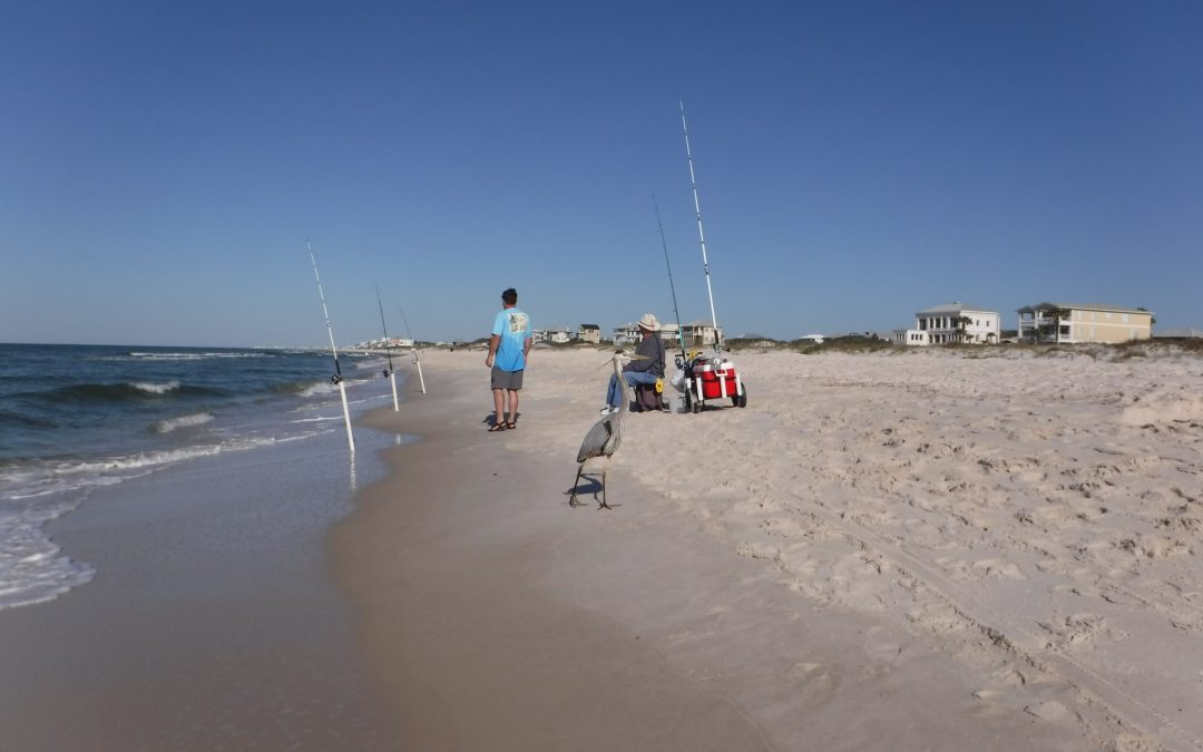 April Pier & Shore Fishing Report