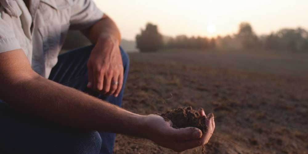 Soil Sampling for food plots.