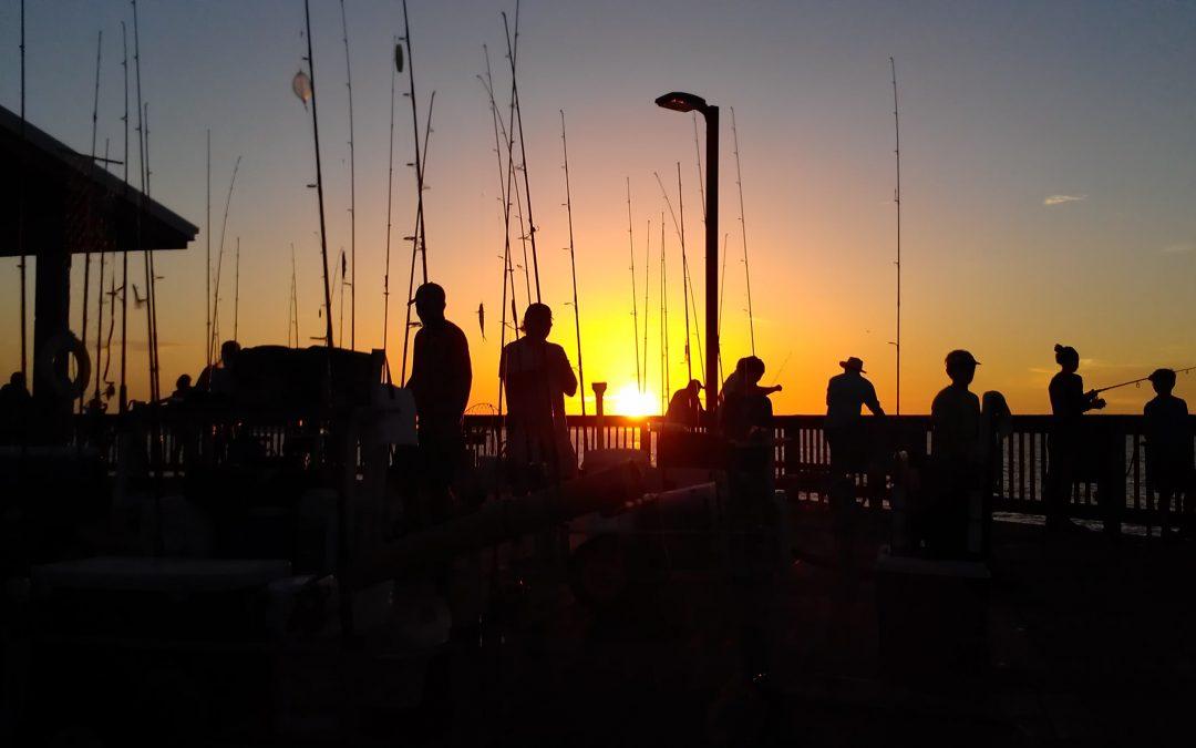 Pier & Shore Report: Dress Cool and Enjoy the Sun