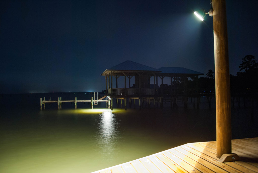 Aluminium LED Flashlight Red Light Night Fishing Eel Pike Perch Waller Night Fishing Hunting