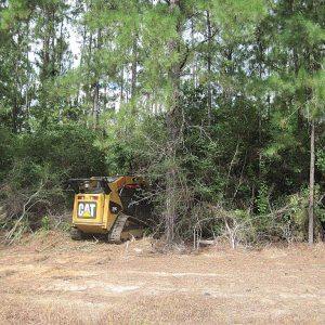 Brush Cutting for Wildlife Management