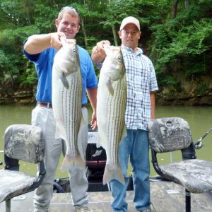 Fishing for Striped Bass in the Summer