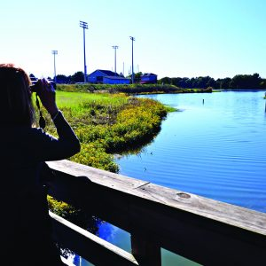 Birding Trails in Alabama