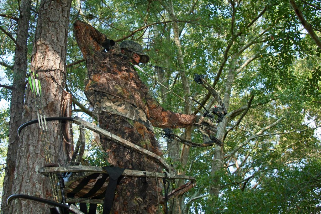 Archery target practice done right will help you put venison in the freezer this fall.