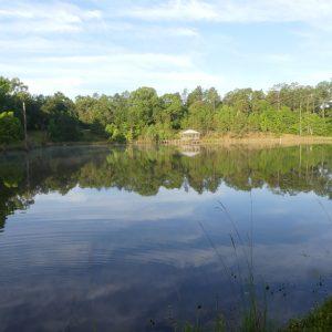September Alabama Lakes Outlook