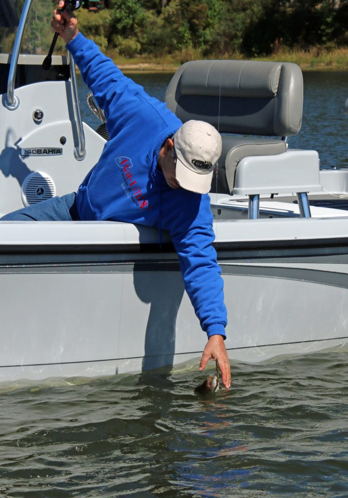 One of the first things fall bass fishing anglers must look for on any lake is baitfish.