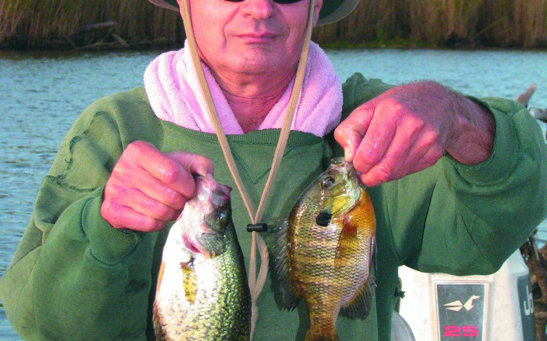 Fishing in Brackish Water for Bass