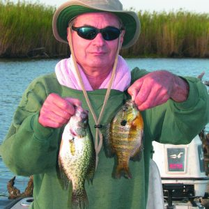 Fishing in Brackish Water for Bass