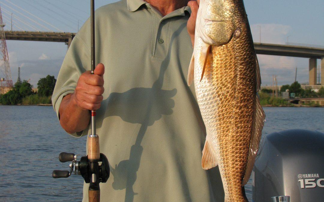 Coastal Fishing Outlook