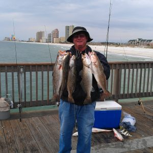 November 2017 Pier and Shore Fishing Forecast