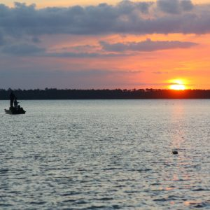 Mobile Bay Fishing Spots: Western Shore