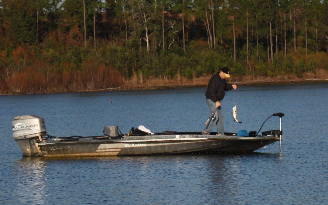 Winter Bass Tactics