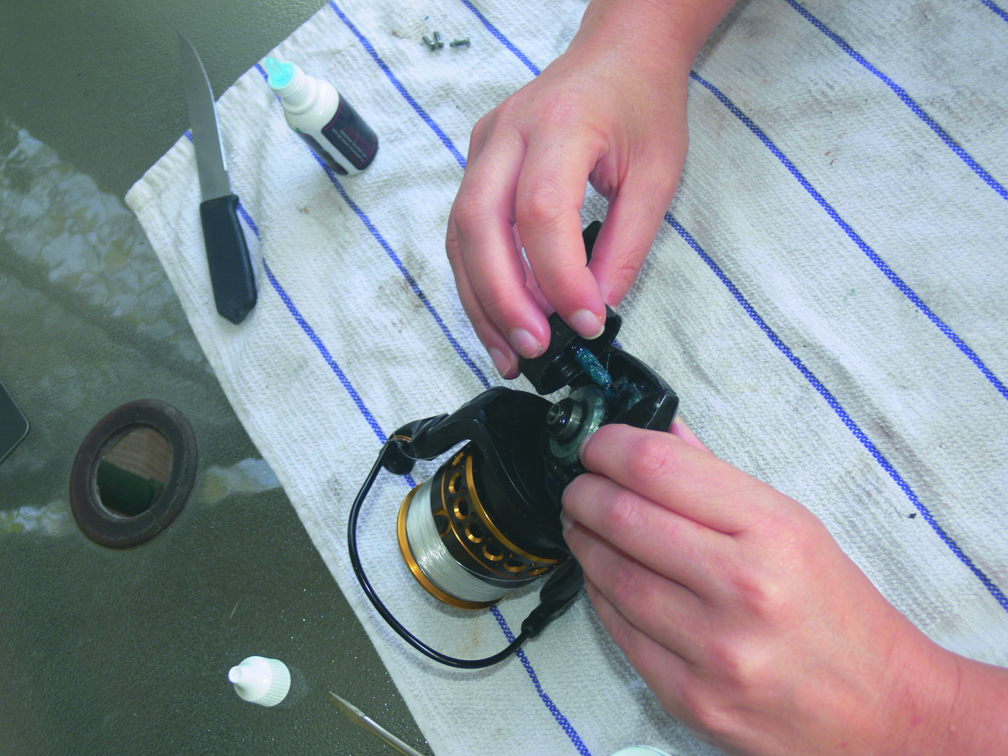 Step five to maintain your spinning reel