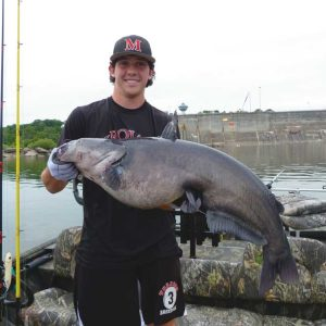 Whisker Catfish: They're Not Just for Summer