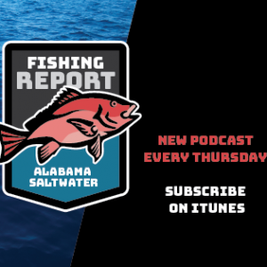 Alabama Saltwater Fishing Report Podcast