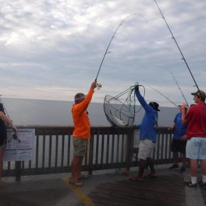 June's Pier & Shore Fishing Forecast