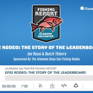 ASWFR Ep 22:  Rodeo-The Story of the Leaderboard