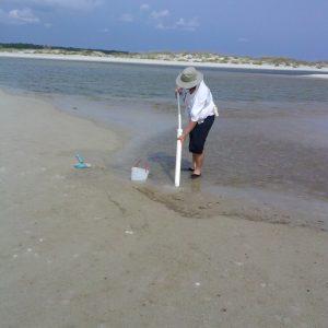 How to Build a Ghost Shrimp Pump
