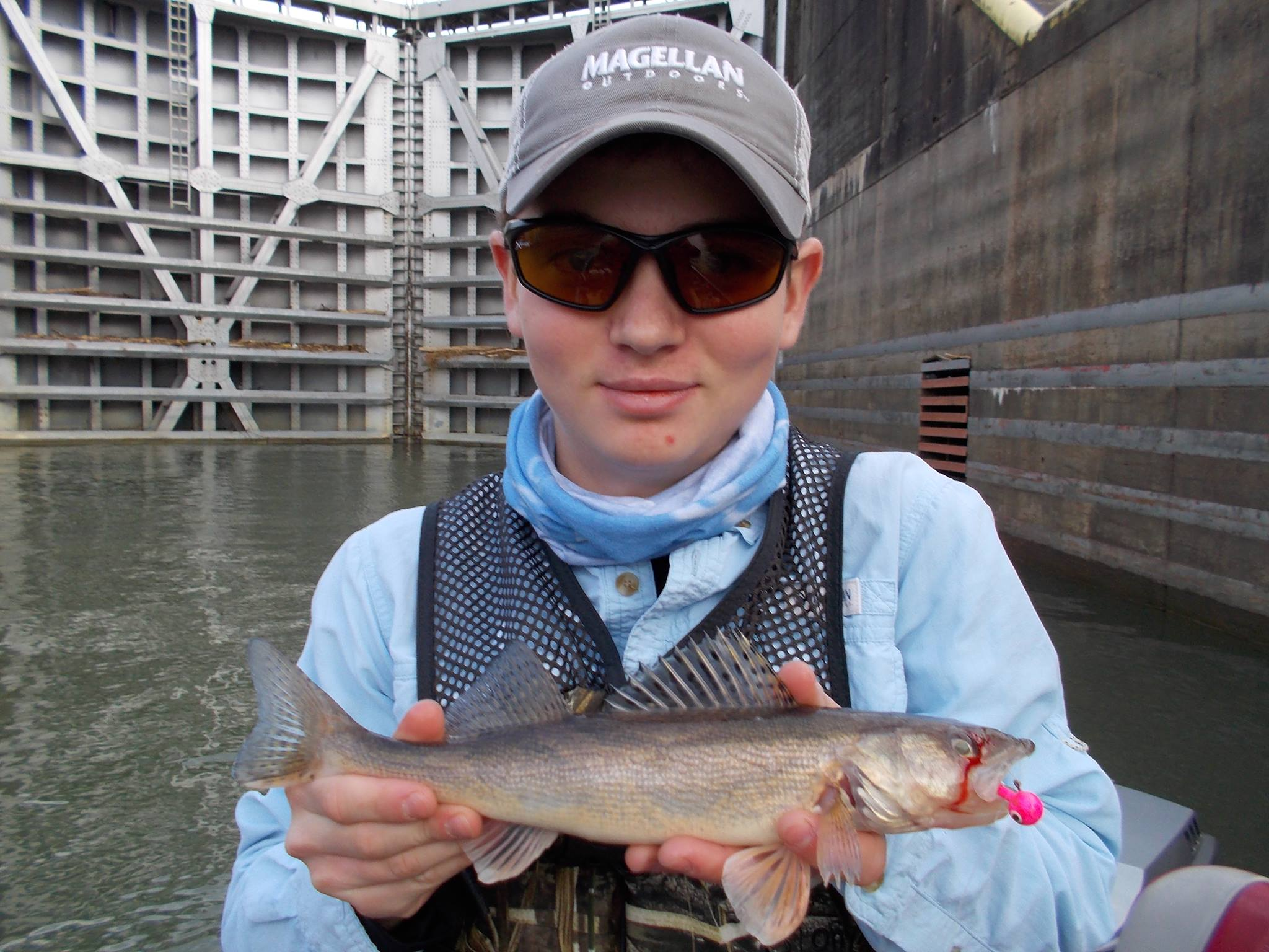 In general, juvenile sauger fish drift downstream immediately after birth