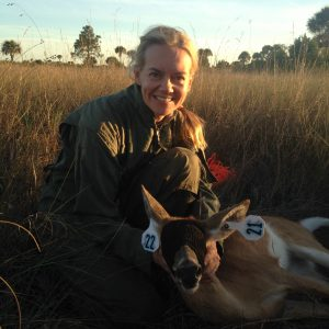 The Truth About The Florida Deer Rut