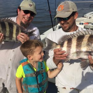 Sheepshead Fishing Tips for Goat Herding