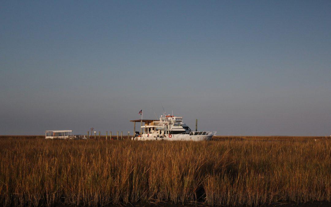 Fishing the Biloxi Marsh