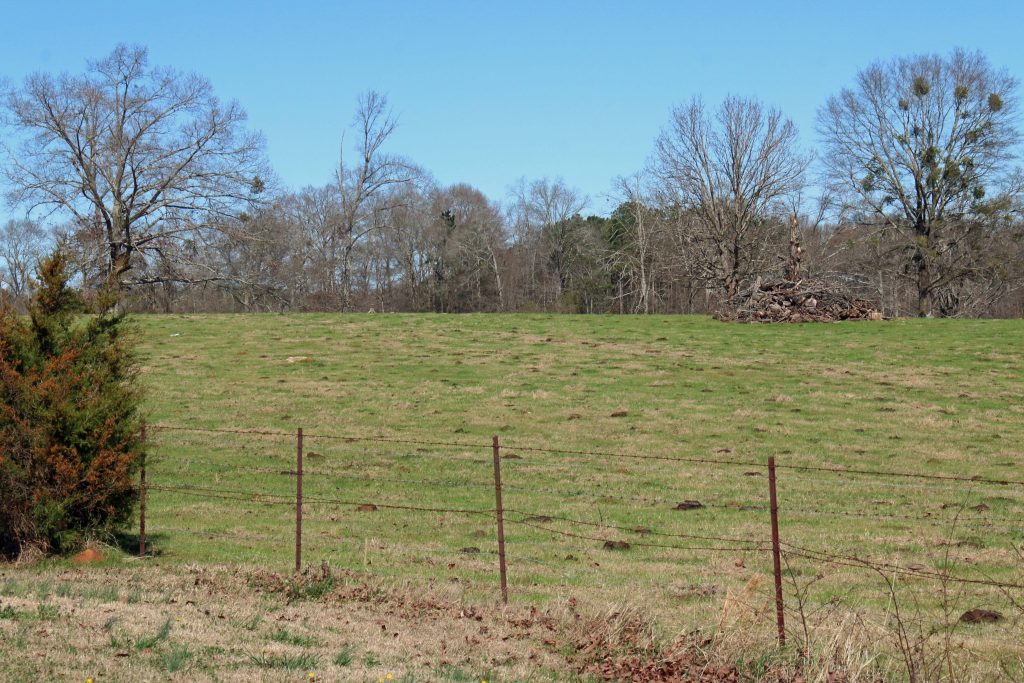 Getting a land appraisal can help determine your land worth.