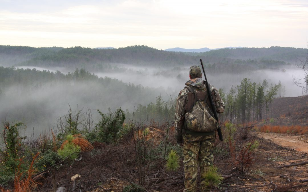 Land Appraisal – What's Hunting Land in Alabama Worth