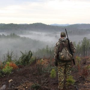 Land Appraisal – What's Hunting Land in Alabama Worth?