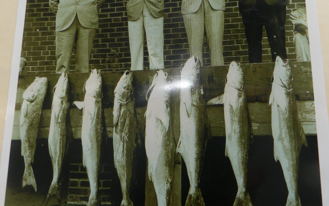 The History of Deep Sea Fishing Orange Beach