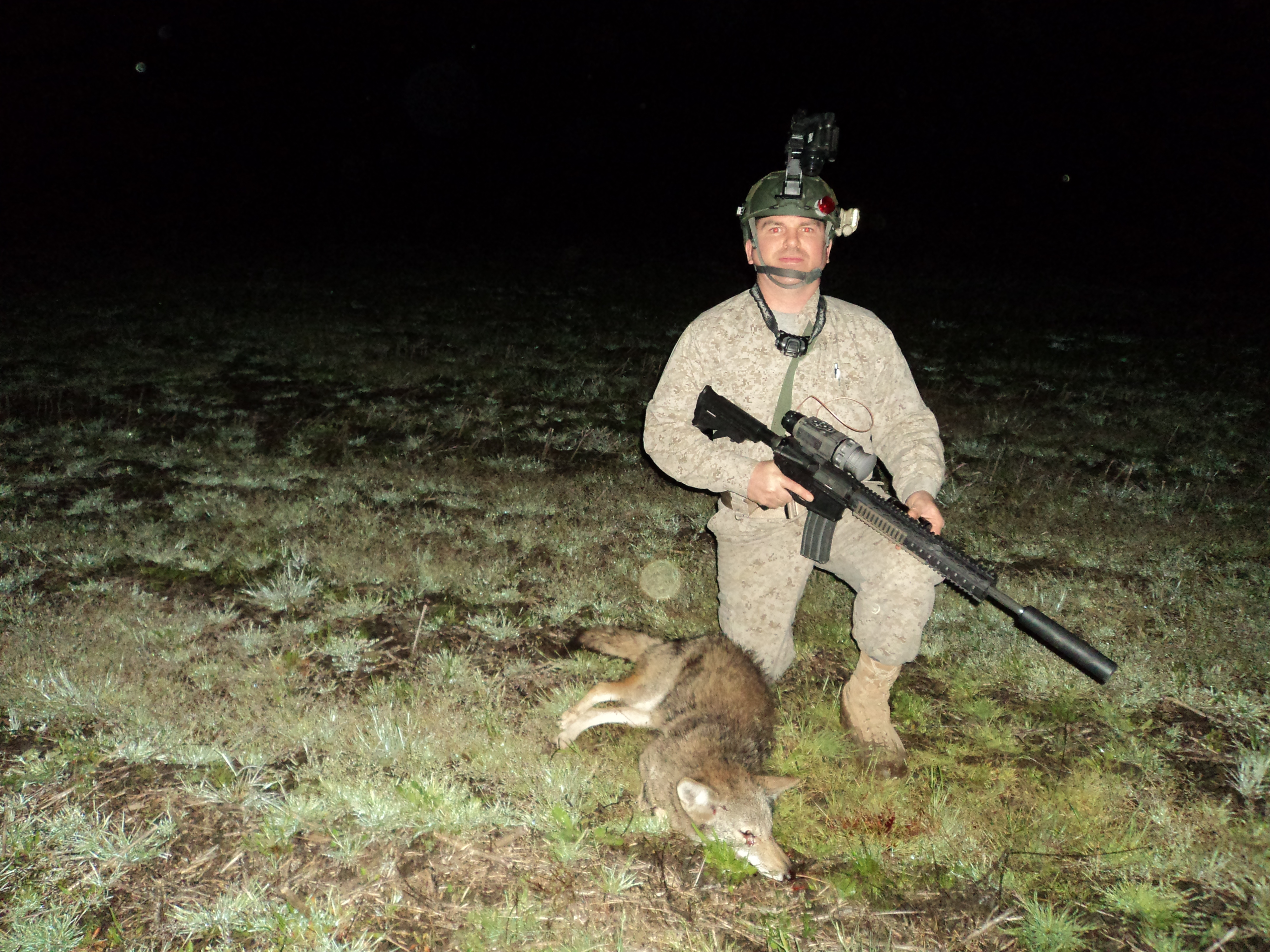 a well outfitted 223 AR-15 will increase your accuracy for long coyote shots