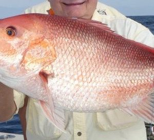 Red Snapper Bottom Fishing – Best Boat Positioning