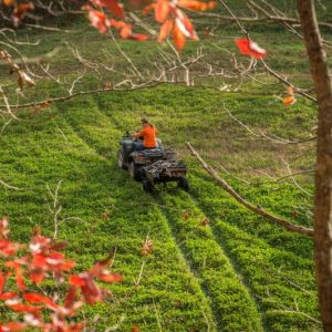 Food Plot Equipment – What Do You Really Need?