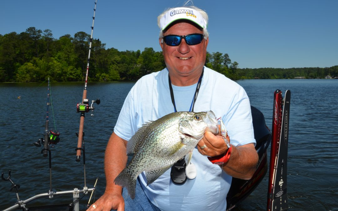 Late Summer Crappie Fishing Tactics