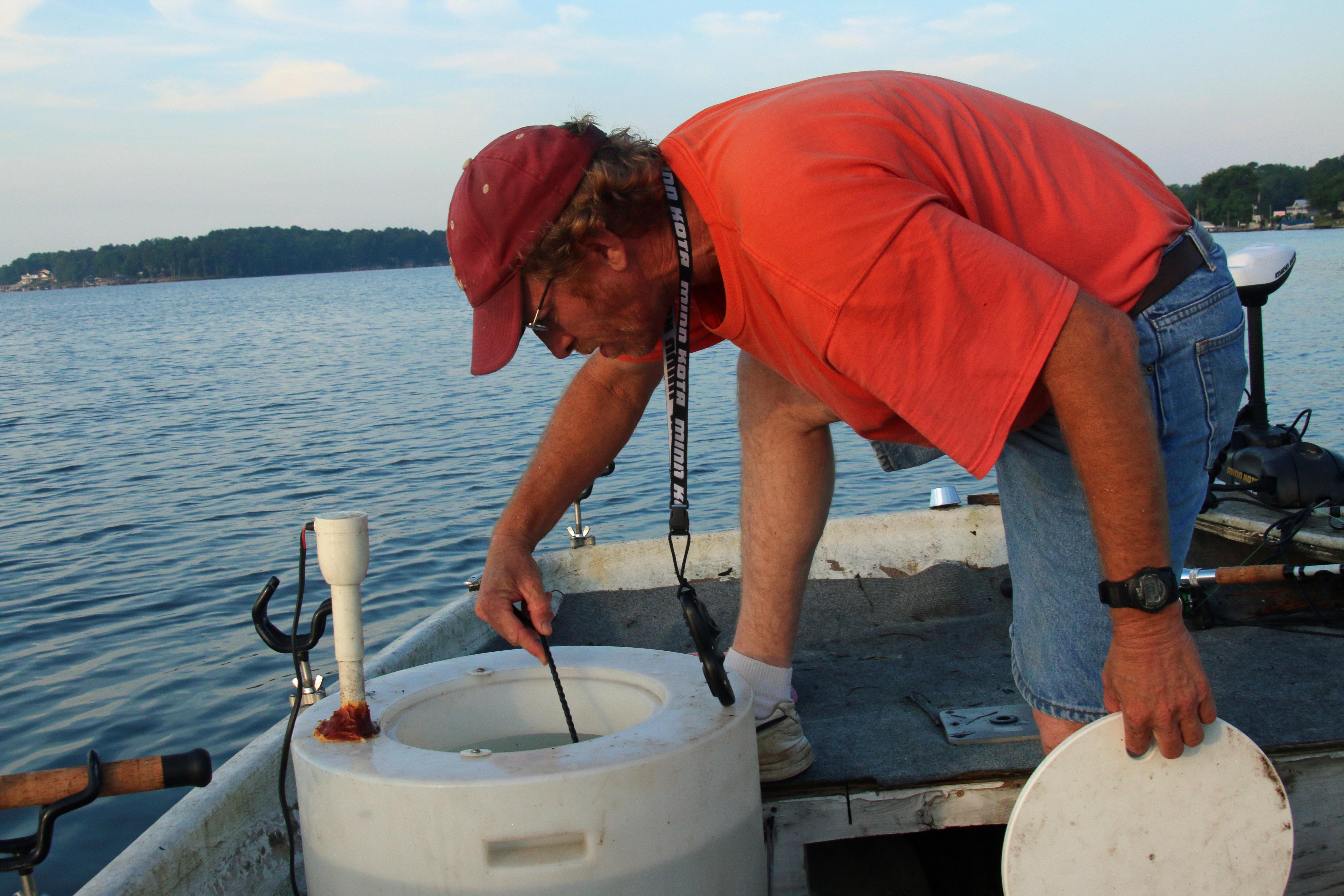 good catfish bait tank