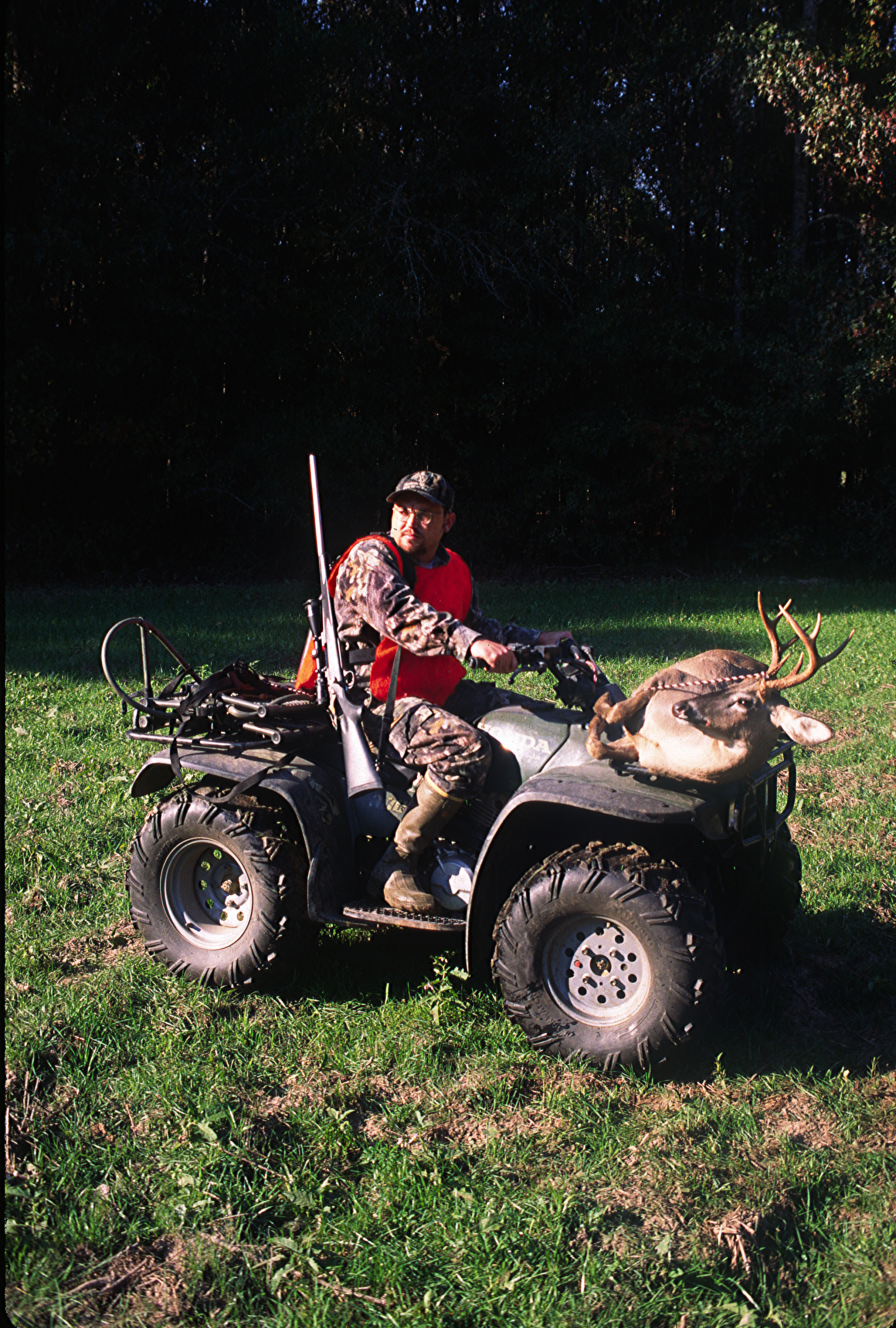 hunting food plots