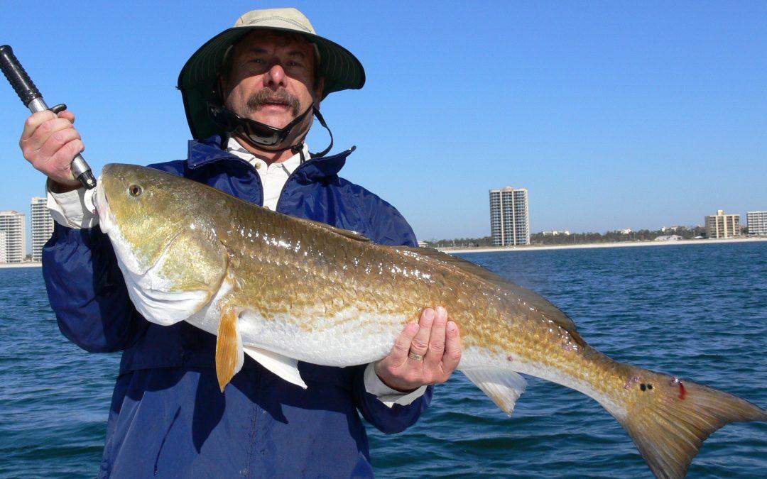 Bull Red Bonanza – Fishing the Fall Run