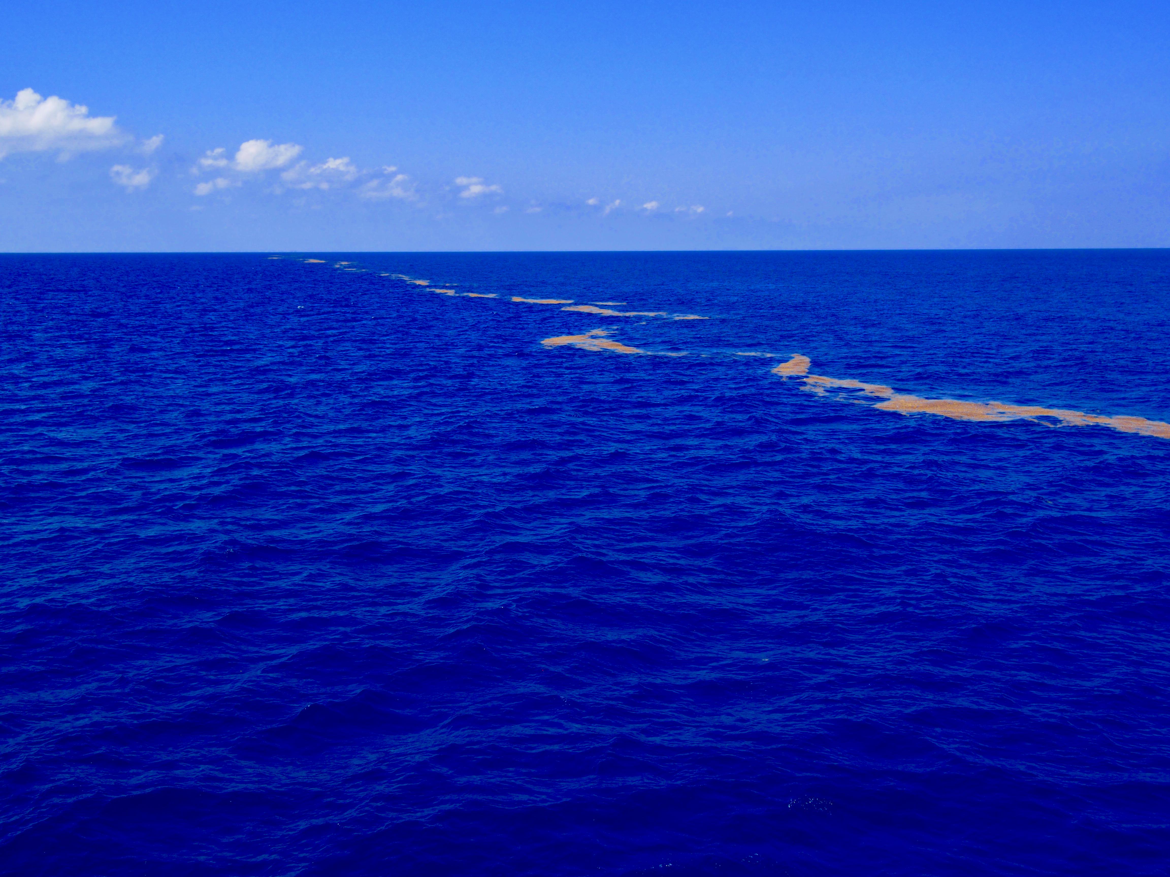 gulf of Mexico oil rig fishing alabama Louisiana