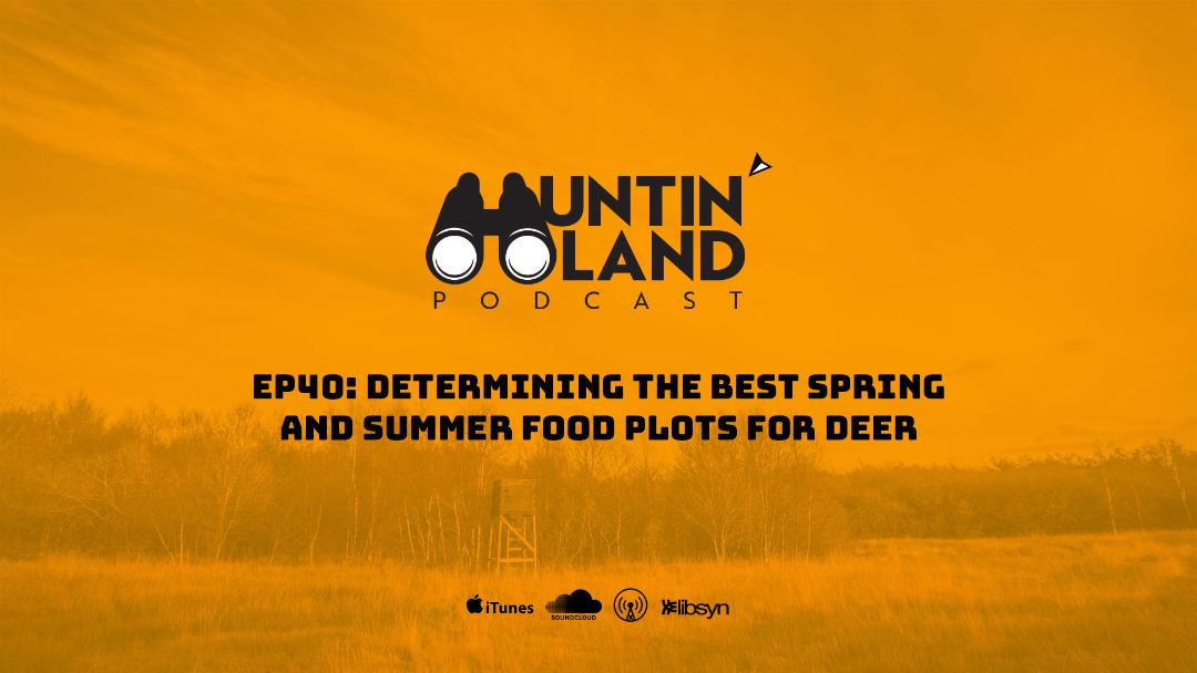 Determining the Best Spring and Summer Food Plots for Deer