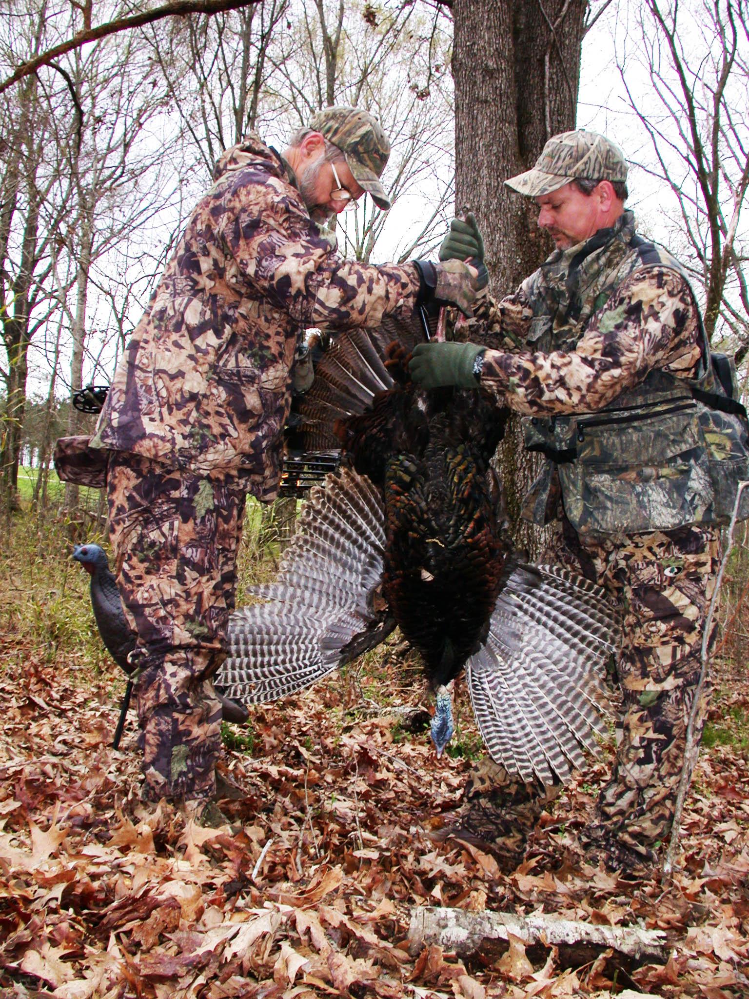 bow hunting turkey