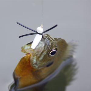 Bluegill Fishing Tips For The Spring