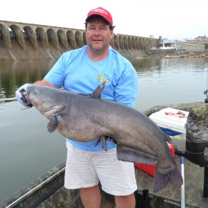 Catching Big Catfish Near Alabama Dams