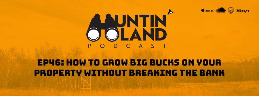 "How to Grow Big Bucks on Your Property, best protein for deer antler growth, how much do deer antlers grow in July, how to increase deer antler growth, what helps deer antlers grow, How Much is My Land Worth  - ""How Much is My Land Worth Per Acre?"" - ""how Much is my land worth Today?"".  - ""How much is timberland worth""  - ""Farmland Values""  - ""what is my farm land worth""  - ""how much is agricultural land worth"""