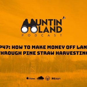 How to Make Money Off Land Through Pine Straw Harvesting