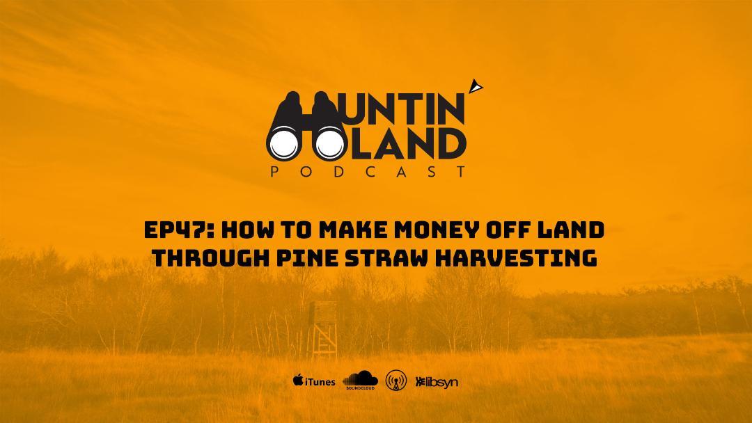 How to Make Money Off Land Through Pine Straw Harvesting