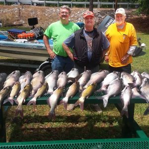Jug Fishing Tips to Catch More Catfish
